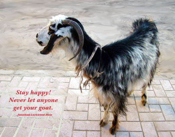 Goat Quotes Simple Goat Quotes And Sayings Quotes About Goat