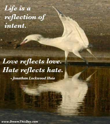 quotes on hate. Hate Quotes and Sayings Quotes about Hate by Jonathan Lockwood Huie