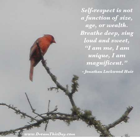 Self Respect Quotes | Self Respect Quotes Self Esteem Quotes Self Confidence Quotes